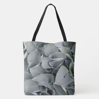 Mini Green Hosta | Bag