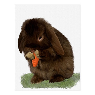 Mini Lop Bunny and carrot Postcard