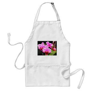 Mini orchids standard apron