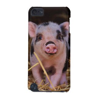 mini pig iPod touch 5G cases