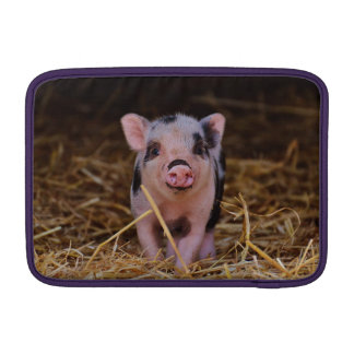 mini pig MacBook sleeve