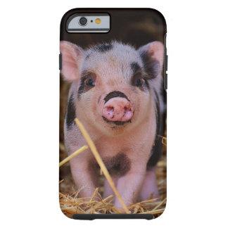 mini pig tough iPhone 6 case
