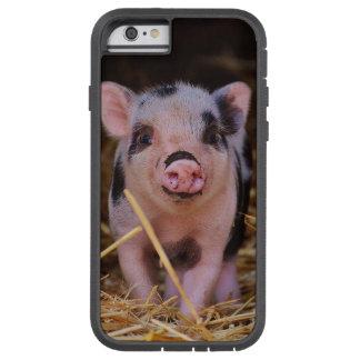 mini pig tough xtreme iPhone 6 case