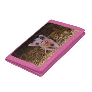 mini pig tri-fold wallet
