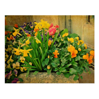 Mini Springtime Garden Postcard