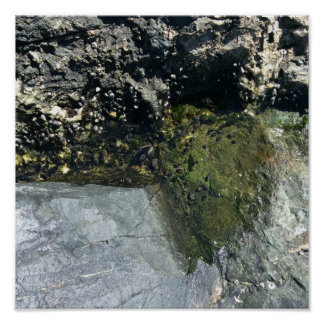 Mini water pool on rocky beach poster