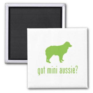 Miniature Australian Shepherd Square Magnet