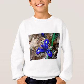 Miniature Blue Dutch Iris Sweatshirt