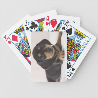 Miniature Dachshund Bicycle Playing Cards