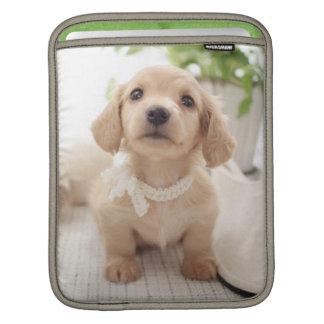 Miniature Dachshund iPad Sleeve