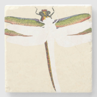 Miniature Dragonfly on White Background Stone Coaster