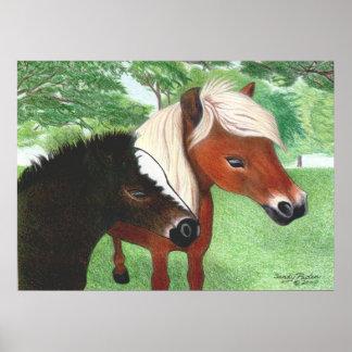 Miniature Horses Poster