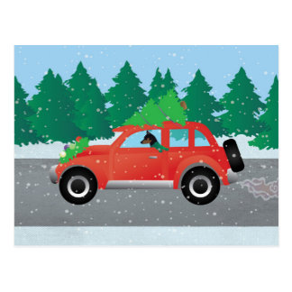 Miniature Pinscher Christmas Car Postcard