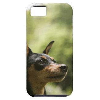 Miniature Pinscher (Min-Pin) 2 Case For The iPhone 5