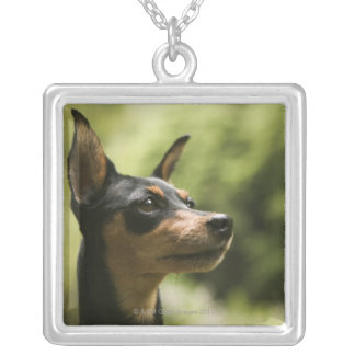 Miniature Pinscher (Min-Pin) 2 Silver Plated Necklace