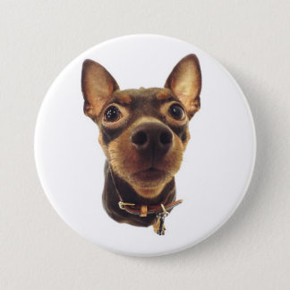 Miniature Pinscher Pin Button