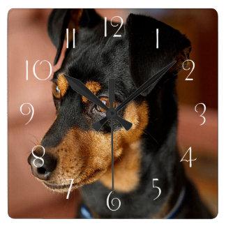 Miniature pinscher square wall clock