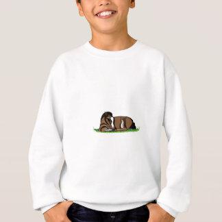 Miniature Pony Sweatshirt