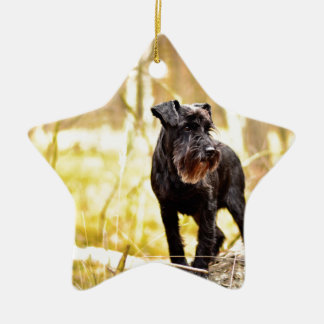 miniature-schnauzer ceramic ornament