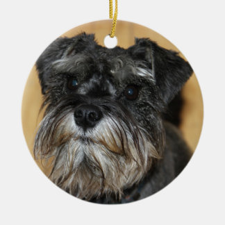 Miniature Schnauzer Ceramic Ornament