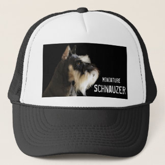 Miniature Schnauzer hat
