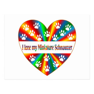 Miniature Schnauzer Love Postcard