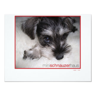 "Miniature Schnauzer Pup 4.25"" X 5.5"" Invitation Card"