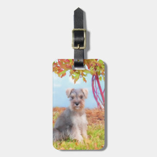 Miniature Schnauzer Puppy Luggage Tag