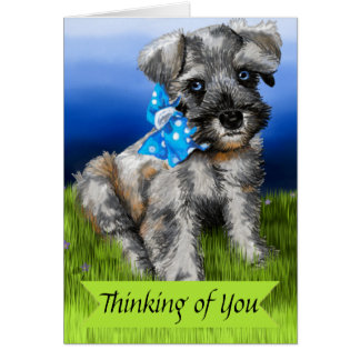 Miniature Schnauzer Puppy Thinking of You Card