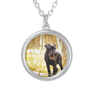 miniature-schnauzer silver plated necklace