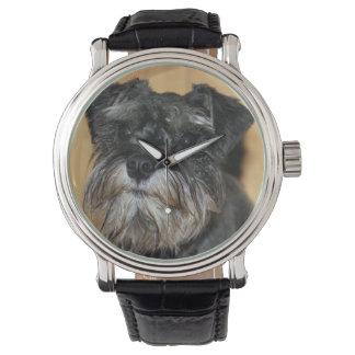 Miniature Schnauzer Watch