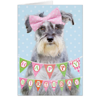 Miniature Schnauzer Wearing Pink Polka Dot Bow Card