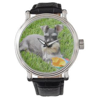 Miniature Schnauzer Wrist Watch