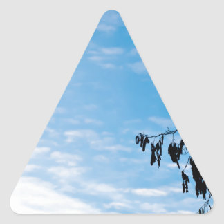 Minimalism photograph triangle sticker