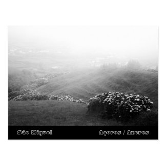 Minimalist landscape postcard