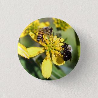Mining Bee & Honey Bee on Wildflower Button