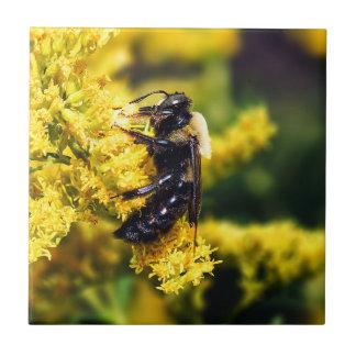 Mining Bee on Goldenrod Ceramic Photo Tile