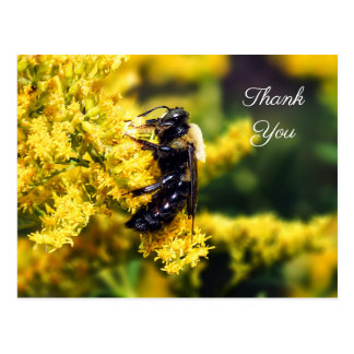 Mining Bee on Goldenrod Thank You Postcard