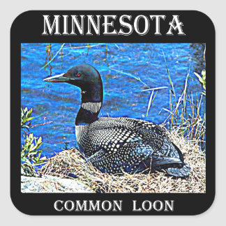 Minnesota Common Loon Square Sticker