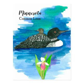 Minnesota Common Loon Watercolor Lake Postcard