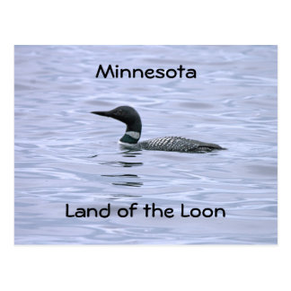 Minnesota land of the Loon Postcard