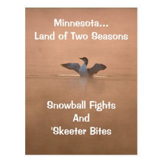 Minnesota...Land of Two Seasons Postcard