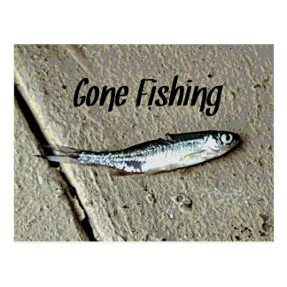"Minnow Bait ""Gone Fishing"" Postcard"