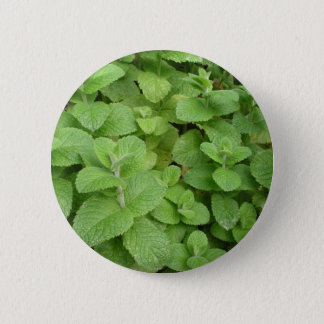 Mint 2 Inch Round Button