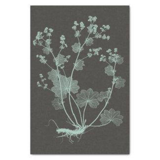 Mint & Charcoal Nature Study I Tissue Paper