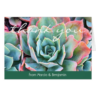 Mint green cactus close-up photo thank you card