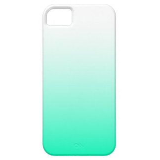 Mint Green Ombre iPhone 5 Case