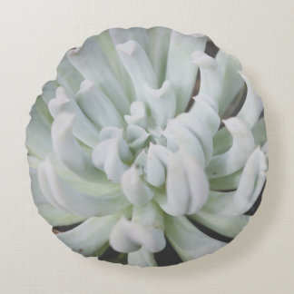 Mint Green Succulent Photo Round Pillow