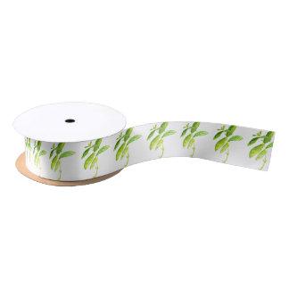 Mint herb Mint watercolour Mint print Satin Ribbon