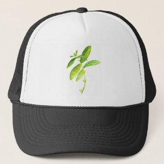 Mint herb Mint watercolour Mint print Trucker Hat